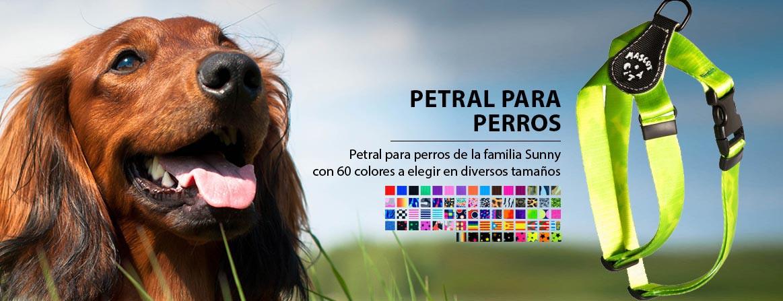petral_slide